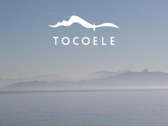 tocoele-paysage